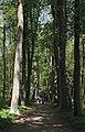 Konopiste Park - Czech Republic - panoramio - Sergey Ashmarin.jpg