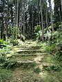 Kumano Kodo stairs.jpg