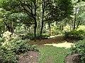 Kunming Botanical Garden - DSC02804.JPG