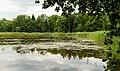 Lüneburg Hasenburger Bachtal 005 2017 06 28.jpg