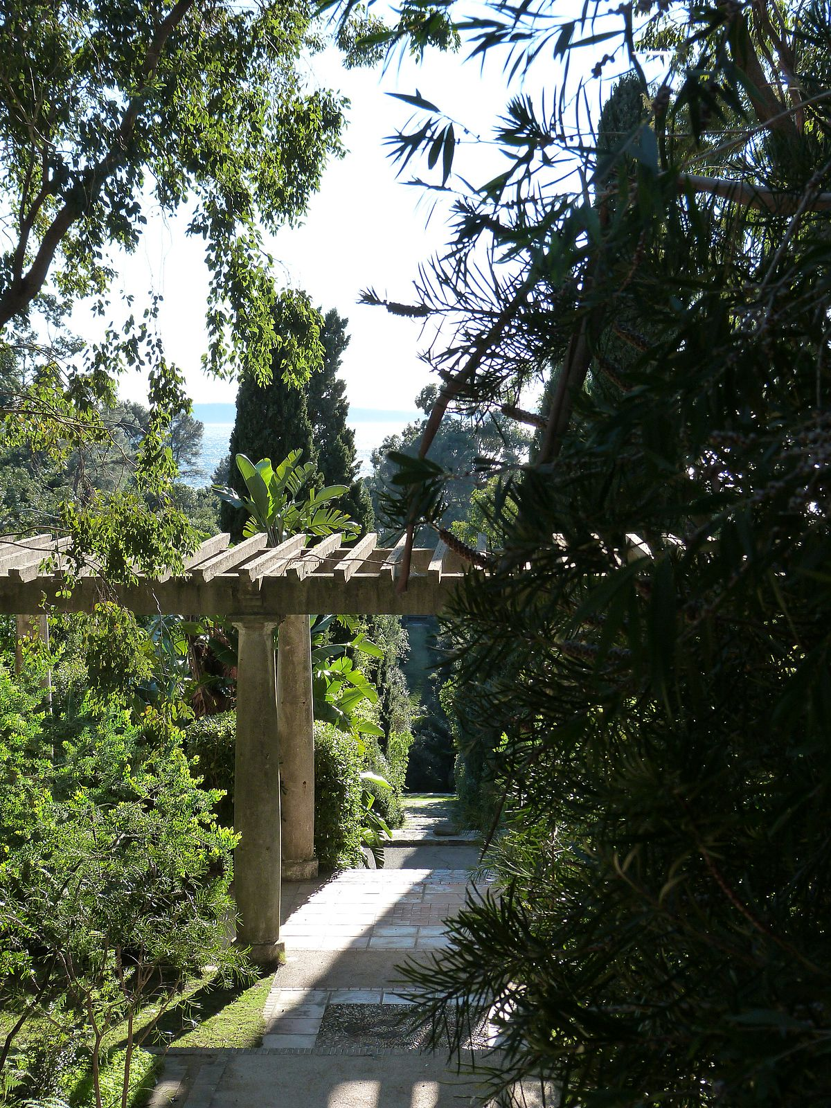 Domaine du rayol wikip dia - Domaine du rayol le jardin des mediterranees ...