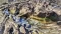 La playa del Confital en Las Palmas de Gran Canaria (15617347134).jpg