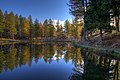 Lago della Ninfa -2 (2975441970).jpg