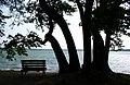 LakeCarlosStatePark.jpg