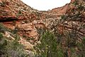 Landscape in Zion National Park (3443199093).jpg