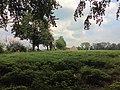 Landschaftsschutzgebiet Strothheide Melle Datei 12.jpg