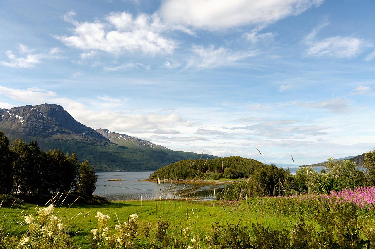 File:Landskap i narheten av Narvik Norge, Johannes Jansson