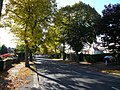 Langer Lane - geograph.org.uk - 575197.jpg