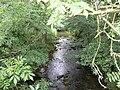 Langley Beck. - geograph.org.uk - 512579.jpg