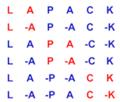 Lapack.png