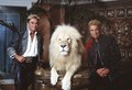 Las Vegas, Nevada's headlining illusionists Siegfried & Roy (Siegried Fischbacher and Roy Horn) in their private apartment at the Mirage Hotel on the Vegas Strip, along with one of their LCCN2011634020.tif