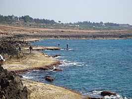 Fishermen in Latakia