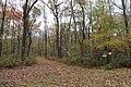 Laurel Mountain Summit - panoramio (5).jpg