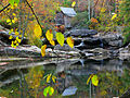 Leaves-water-reflection-grist-mill - West Virginia - ForestWander.jpg