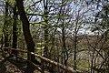 Leitenwälder der Isar 0593.jpg