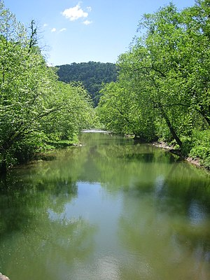 Little Cacapon River - The Little Cacapon viewed north from the Okonoko-Little Cacapon Road (County Route 2/7) bridge