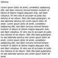 Lorem Ipsum Tahoma.png