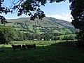 Loutrezo, au cœur du parc des volcans d'Auvergne, dans le département du Cantal. - panoramio (3).jpg