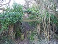 Low headroom path - geograph.org.uk - 1721961.jpg