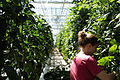 Lufa Farms Greenhouse Staff.jpg