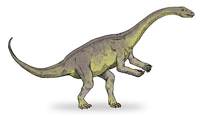 Lufengosaurus sketch2.jpg