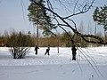 Lyovintsy, Kirovskaya oblast', Russia, 612079 - panoramio (137).jpg