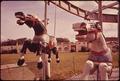 MERRY-GO-ROUND AT AN AMUSEMENT PARK ON ST. SIMON'S ISLAND - NARA - 547002.tif