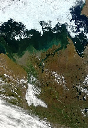 Mackenzie River - Satellite view of the lower Mackenzie River