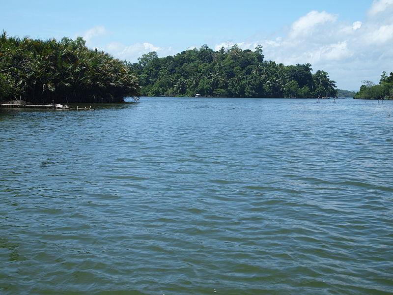 Maduganga4.jpg