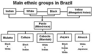 Brazilians - Image: Main ethnic groups in brazil