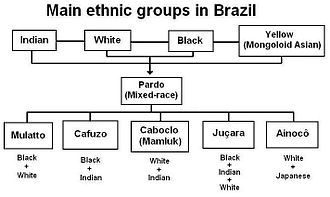 Afro-Brazilians - Main ethnic groups in Brazil.
