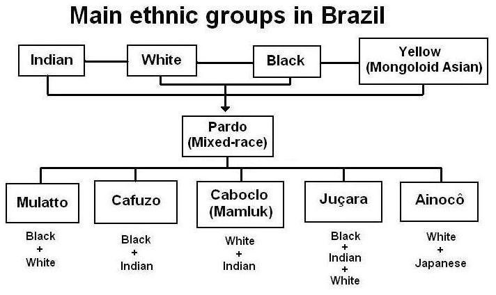 Main ethnic groups in brazil