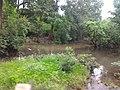 Majhgawan, Madhya Pradesh 485661, India - panoramio (2).jpg