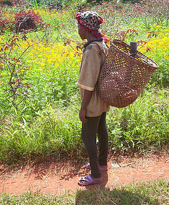 East Region (Cameroon) - Maka woman on the way to her fields near Abong-Mbang