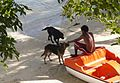 Making friends...Mauritius - Flickr - gailhampshire.jpg