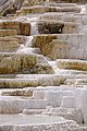 Mammoth Hot Springs detail 3.jpg