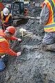 Mammoth bones found at OSU expansion of Valley Football Center - DSC 0377 - 24022803863.jpg