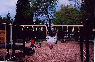 Jungle gym - Image: Manon Monkey Bars