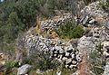 Marges de bancals abandonats al Montgó.jpg