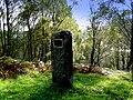 Marker stone near Cannich - geograph.org.uk - 998228.jpg