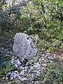 Menhir de lubac (2).jpg