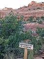 Mescal Trail, Sedona, Arizona - panoramio (8).jpg