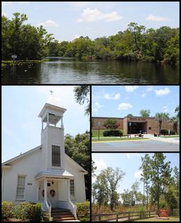 Middleburg, Florida Census-designated place in Florida, United States