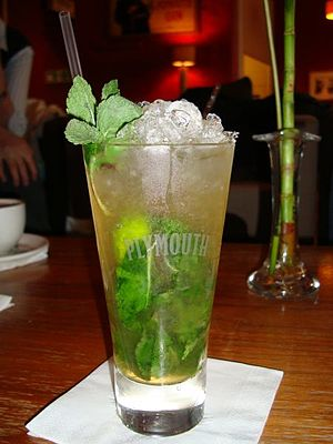 Plymouth Gin - Mojito served in a Plymouth glass