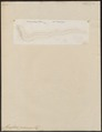 Monopterus javanensis - 1798-1876 - Print - Iconographia Zoologica - Special Collections University of Amsterdam - UBA01 IZ15100133.tif