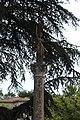 Monument centenaire Révolution française Apt 1.jpg