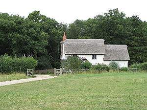 Moor Green. Thatched cottage with woods behind...