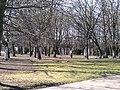 Moskovskiy rayon, Konigsberg, Kaliningradskaya oblast', Russia - panoramio (21).jpg