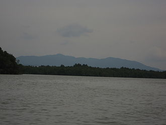 Mount Pulai - Mount Pulai from the Pulai River