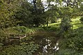 Mount Wilson NSW 2786, Australia - panoramio (91).jpg